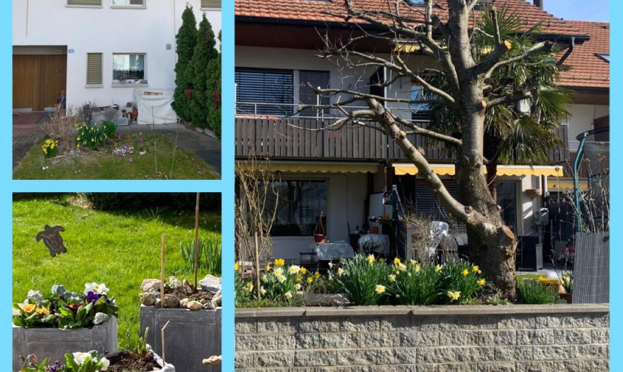 Haus zu verkaufen in Zürich Buchs ZH