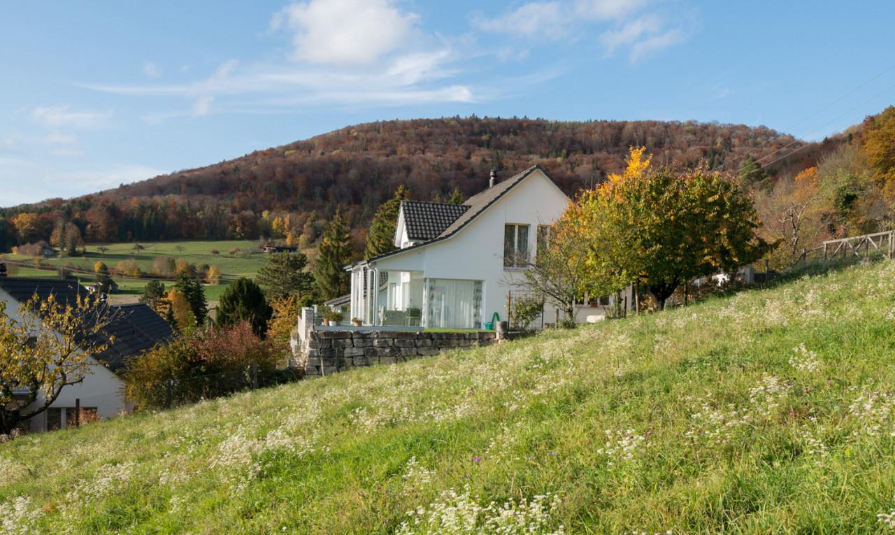 Kaufen Sie Haus in Schaffhausen Löhningen