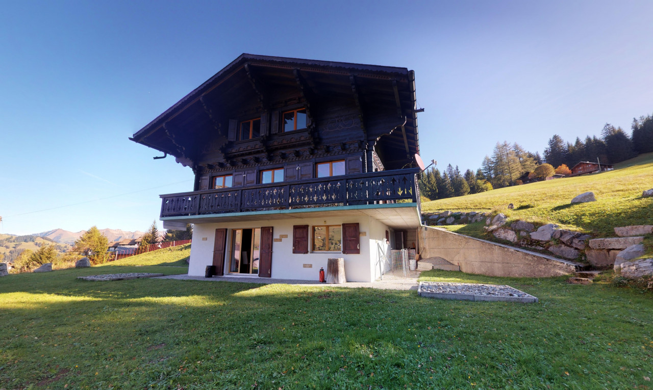 House  for sale in Vaud Les Mosses